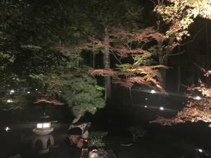 京都の金戒光明寺を四条烏丸の古都で着物レンタルして夜間拝観!8