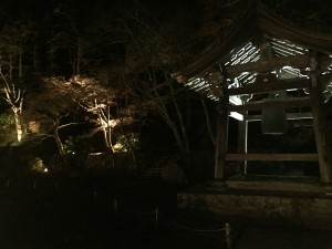 京都 勝林院・宝泉院 秋の夜間特別拝観を着物レンタルで!2