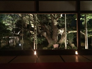 京都 勝林院・宝泉院 秋の夜間特別拝観を着物レンタルで!14