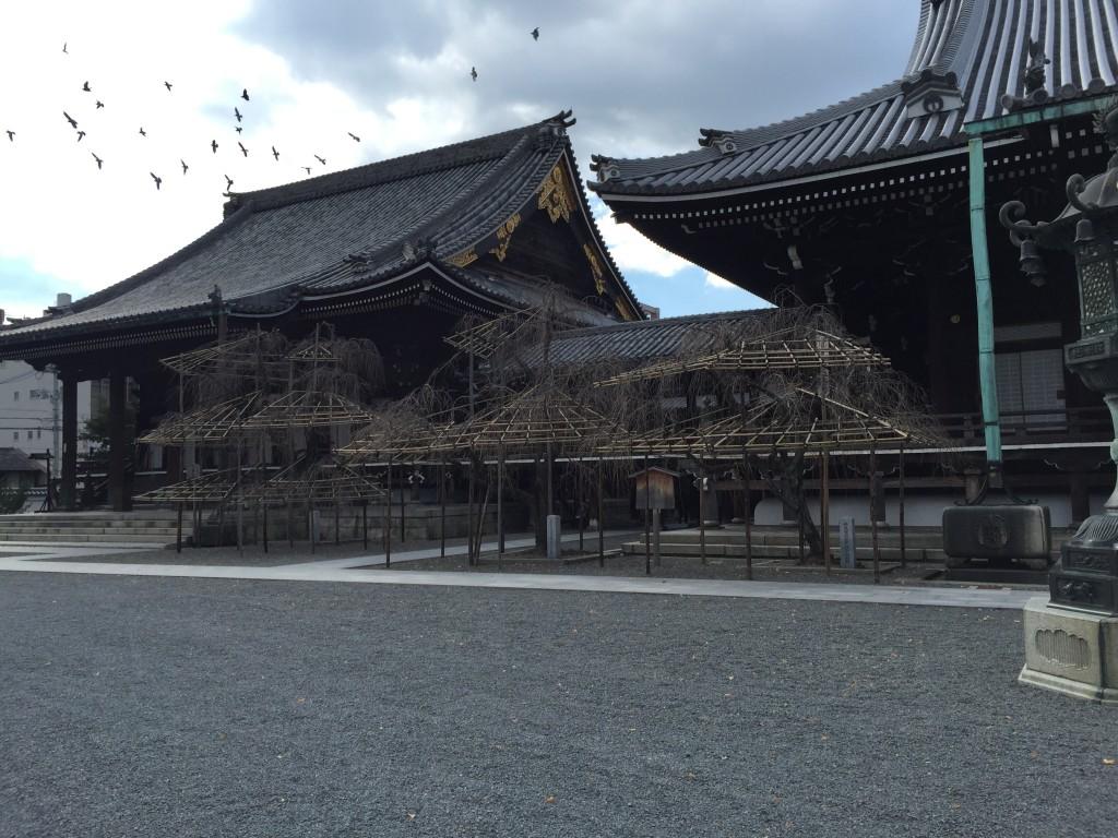 京都スイーツ D&DEPARTMENT KYOTO仏光寺境内2