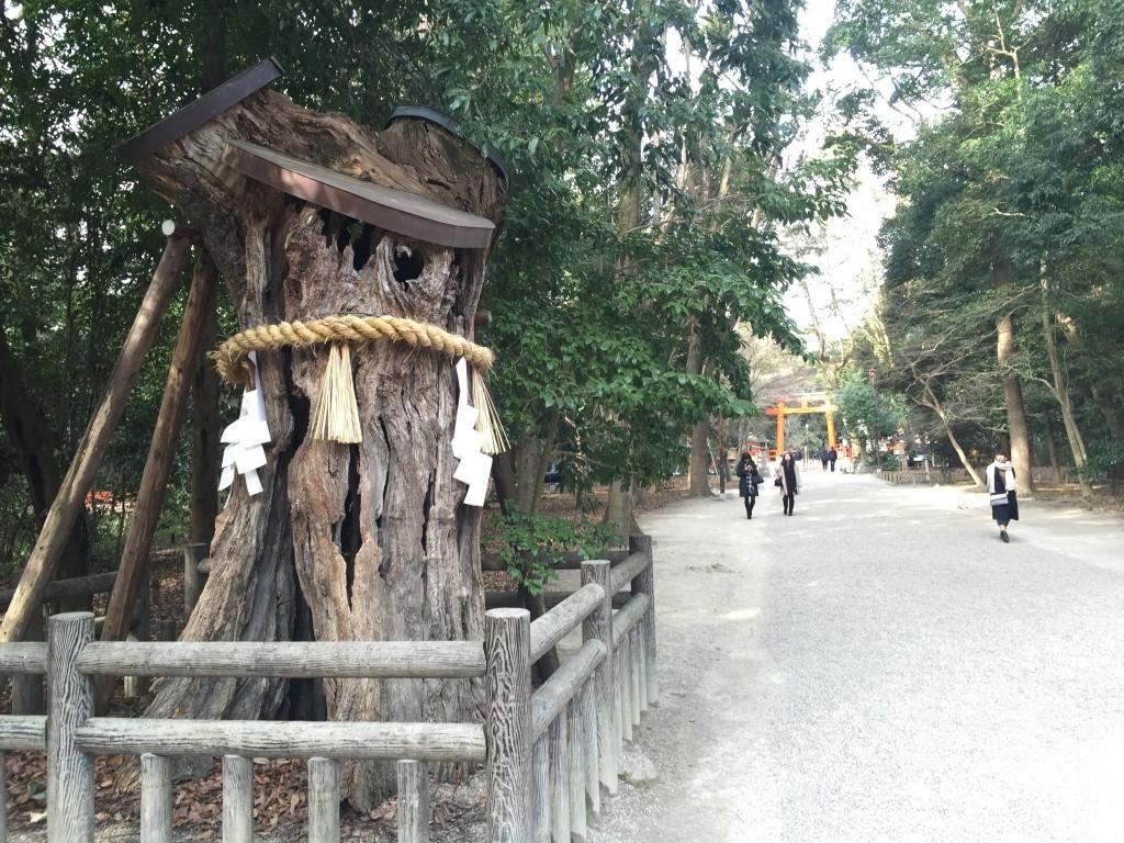 京都の梅スポット 着物レンタルで下鴨神社へ4