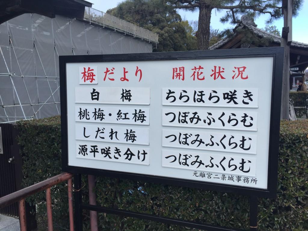 京都の梅スポット「元離宮二条城」四条烏丸からバスで10分10