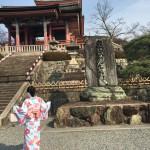 京都の桜満開までもうすぐ!着物レンタル古都31