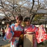 京都の桜満開までもうすぐ!着物レンタル古都29