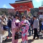 大盛況!着物レンタル三連休最終日!知恩院で桜が!2016年3月21日19