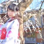 大盛況!着物レンタル三連休最終日!知恩院で桜が!2016年3月21日35