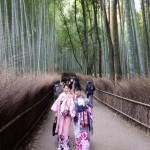 春の京都!みんなで着物レンタル!2016年3月24日28