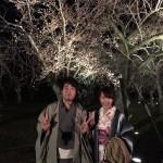 京都祇園白川の桜と着物レンタル2016年3月26日21