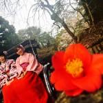 各地で桜の開花宣言!京都レンタルきもの古都2016年3月31日35
