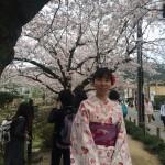 着物レンタルで桜満開の京都を散策!2016年4月2日2