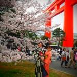 着物レンタルで桜満開の京都を散策!2016年4月2日6