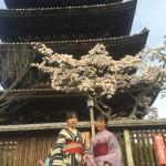 京都御所 春季一般公開を着物レンタルで満喫!2016年4月6日22