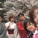 着物レンタルで桜満開の京都を散策!2016年4月2日47