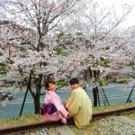 着物レンタルで桜満開の京都を散策!2016年4月2日43