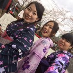 京都の桜満開!着物レンタルでお花見♪2016年4月3日22
