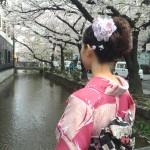 明後日から始業式!その前に着物レンタルで京都の桜を♪2016年4月5日23