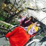 明後日から始業式!その前に着物レンタルで京都の桜を♪2016年4月5日22