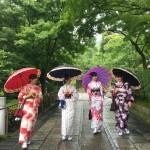 京都レンタルきもの古都!本日おかげさまで一周年!2016年6月19日6