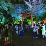 今日も大人気の「下鴨神社 糺ノ森の光の祭」へ!2016年8月24日19