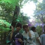 今日・明日で最後の「呼応する球体-下鴨神社糺の森」2016年8月27日29