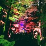 浴衣レンタルで「平安神宮 堂本剛ライブ」へ!2016年8月26日21
