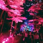 浴衣レンタルで「平安神宮 堂本剛ライブ」へ!2016年8月26日22