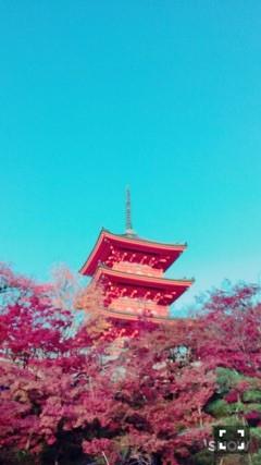 やはり大人気!着物レンタルで八坂庚申堂へ!2016年11月23日39