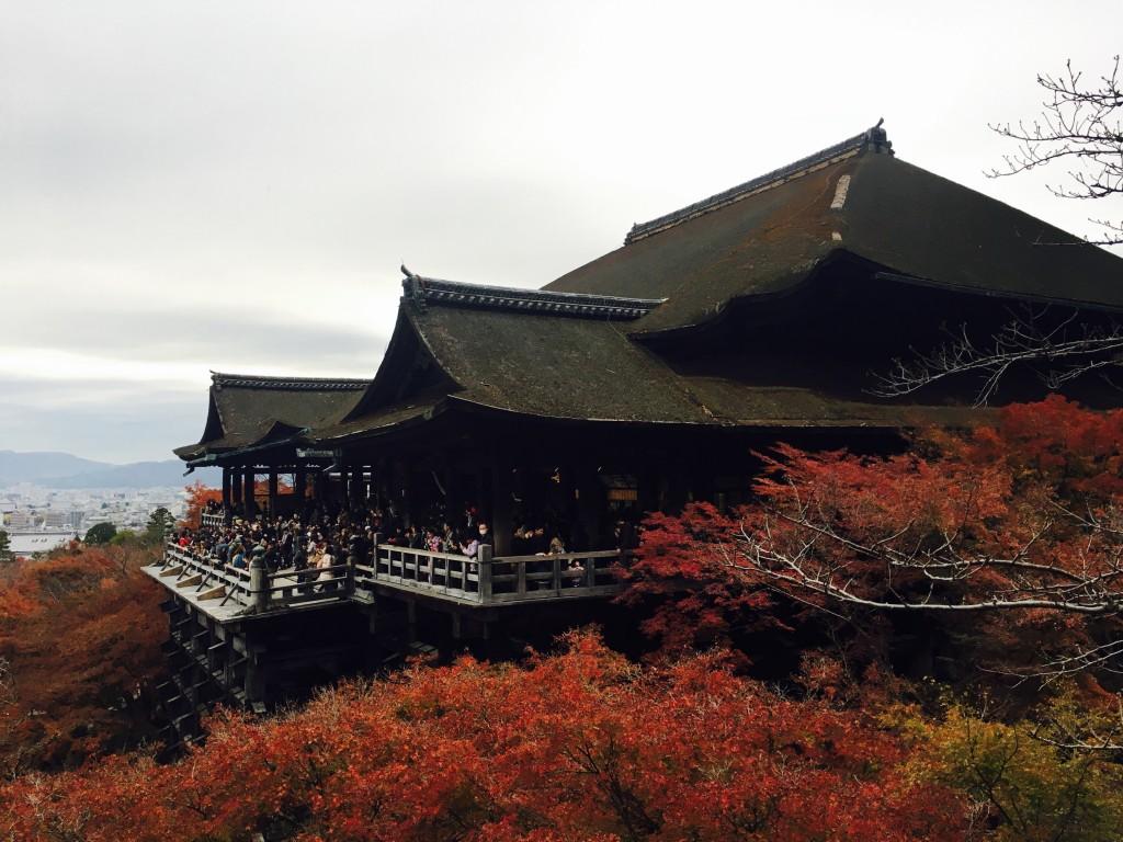 京都の紅葉は観光客でいっぱいです!2016年11月26日35