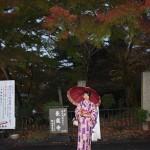 昼も夜も京都の紅葉真っ盛り!2016年11月19日30