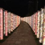 京都で人気の観光スポット嵯峨嵐山へ♪2016年11月2日13