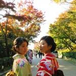 銀閣寺から哲学の道を歩いて永観堂ライトアップへ!2016年11月12日26