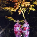 昼も夜も京都の紅葉真っ盛り!2016年11月19日34
