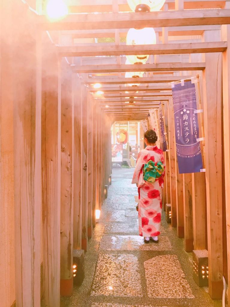 京都の夏の風物詩2017川床終了2017年9月30日6