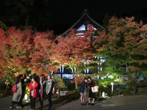 永観堂6【四条烏丸 着物レンタル 京都レンタルきもの古都】