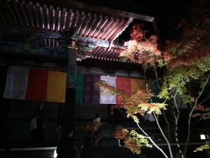 永観堂10【四条烏丸 着物レンタル 京都レンタルきもの古都】