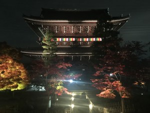 京都の金戒光明寺を四条烏丸の古都で着物レンタルして夜間拝観!3