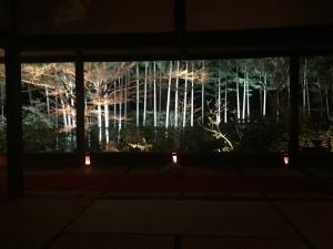 京都 勝林院・宝泉院 秋の夜間特別拝観を着物レンタルで!13