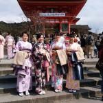 着物レンタルで桜もう少しで満開の京都を散策♪18