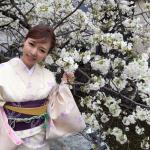 各地で桜の開花宣言!京都レンタルきもの古都2016年3月31日29