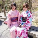 大盛況!着物レンタル三連休最終日!知恩院で桜が!2016年3月21日18