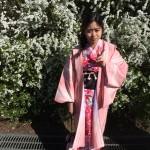 大盛況!着物レンタル三連休最終日!知恩院で桜が!2016年3月21日25