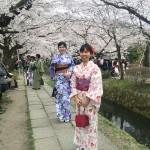 着物レンタルで桜満開の京都を散策!2016年4月2日5