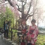 日帰りで春の京都を着物レンタルで散策!2016年4月10日13