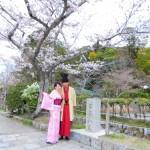 着物レンタルで桜満開の京都を散策!2016年4月2日44