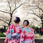 京都御所 春季一般公開を着物レンタルで満喫!2016年4月6日21