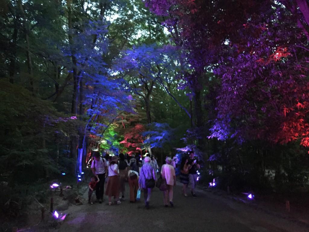 今日も大人気の「下鴨神社 糺ノ森の光の祭」へ!2016年8月24日15