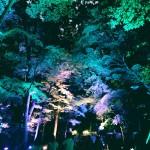 浴衣レンタルで「平安神宮 堂本剛ライブ」へ!2016年8月26日23