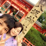 浴衣レンタルで「平安神宮 堂本剛ライブ」へ!2016年8月26日12