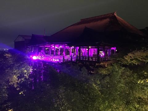 清水寺2016 祈りとエールのピンクイルミネーション1