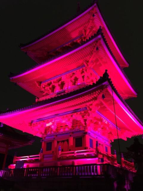 清水寺2016 祈りとエールのピンクイルミネーション3